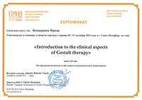 «Introduction to the clinical aspects of Geshtalt therapy», 24 часа